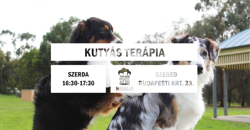 kutyas_09-04